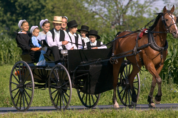 Taken From: https://reesephoto.files.wordpress.com/2012/01/amish-family-in-buggy8.jpg