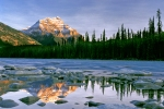 mountain-stream-reflection