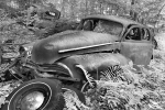 old-car-graveyard12