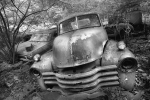 old-car-graveyard15