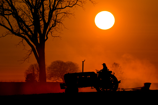 Image result for farmers harvesting at sunset