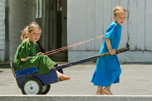 amish-bkue-rickshaw