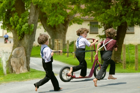 amish-kids-harness