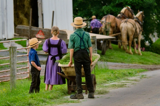 amish-kids-watch-dad