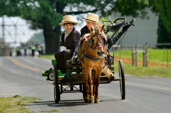 amish-mower-delivery2