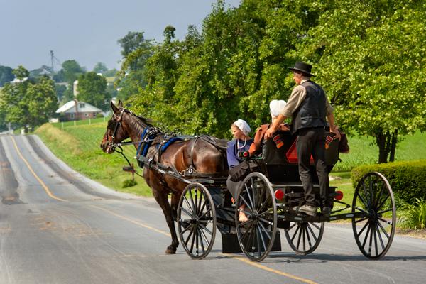 amish-buggy-hitcher