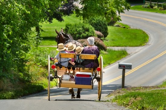 amish-cart-ride