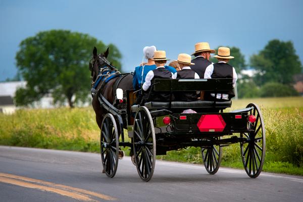 amish-family-buggy-ride.jpg