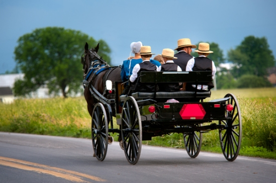 amish-family-buggy-ride