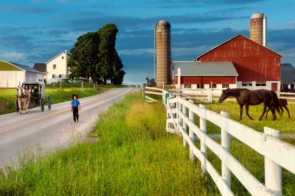 Amish Fence Posts : Our visit to dr rubin the amish iridologist organic