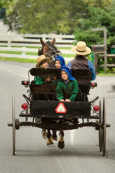 amish-kiddies-on-buggy
