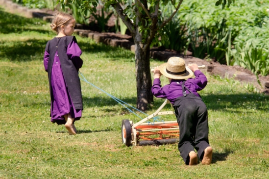 amish-lawn-mower
