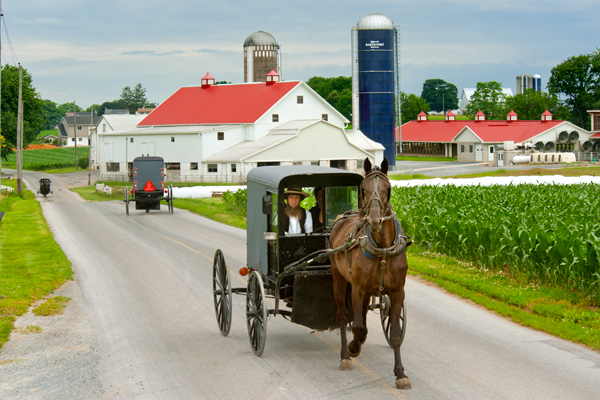 amish-red-roof