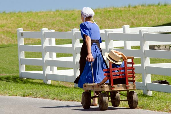 amish-wagon-ride