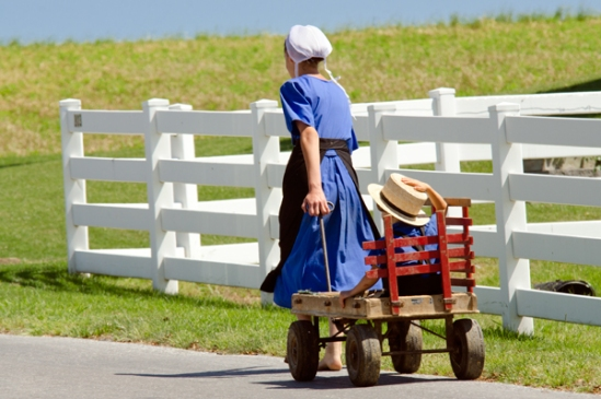 amish-wagon-ride