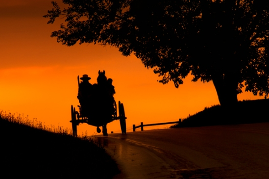 amish-buggy-silhouette