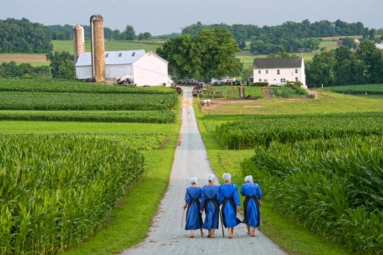 amish-shindig-lane