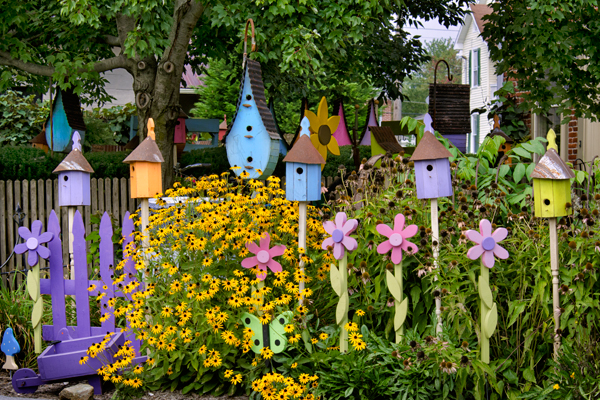 Bird houses donald reese photography for Colorful backyard decorating ideas