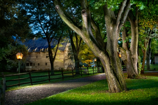 cloister-trees