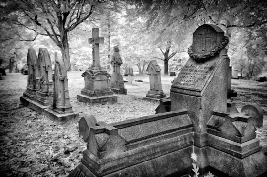 mount-auburn-cemetery14