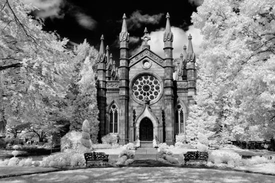 mount-auburn-cemetery15