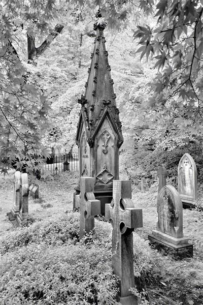 mount-auburn-cemetery3