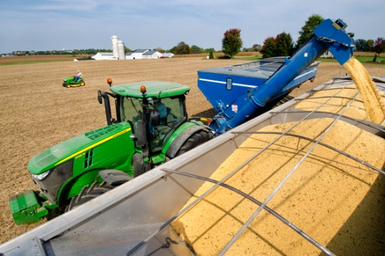 soybean-harvest