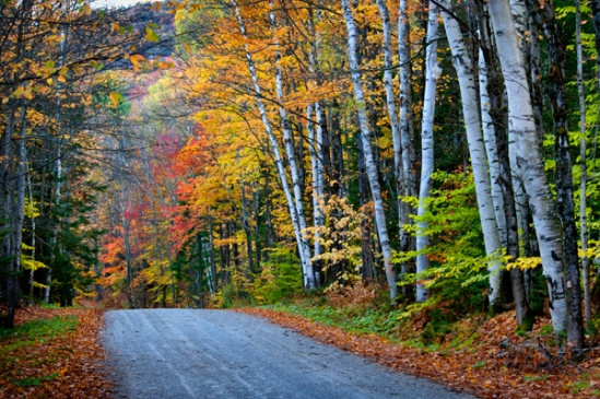 vermont-fall-backroad2