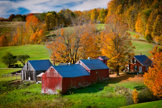 vermont-jenne-farm