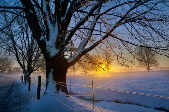 fog-snow-sunrise