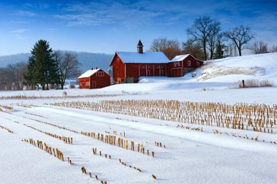 schaefferstown-redbarn-snow