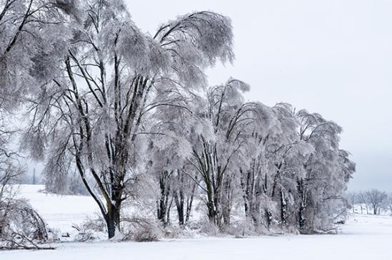 2014-ice-storm