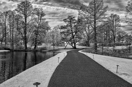 longwood-infrared4