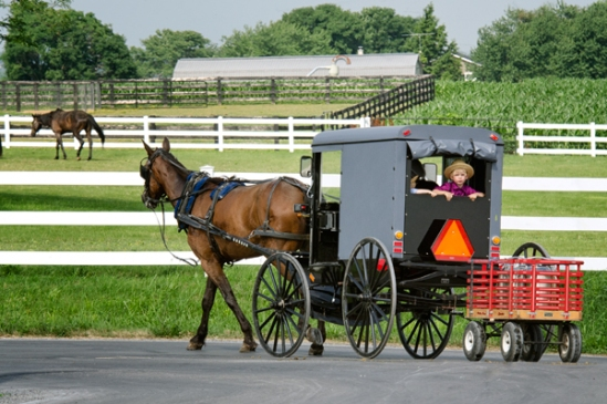 amish-milk-run