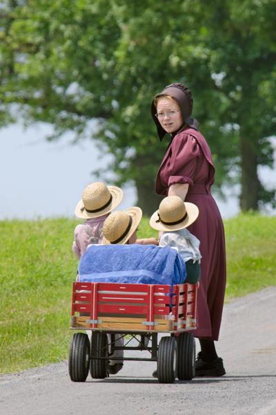 amish-trio-in-wagon