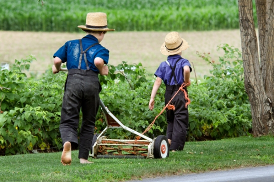 amish-brothers-mowing