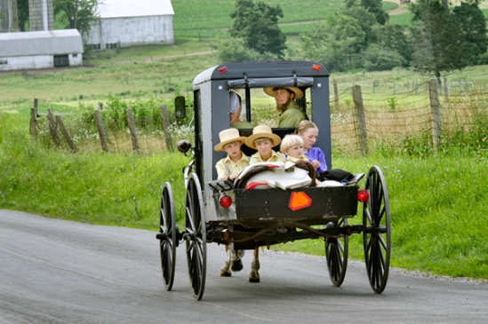 amish-buggy-family