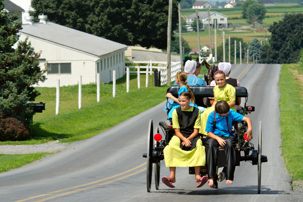amish-loaded-buggy