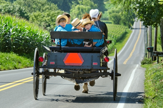 amish-loaded-buggy3