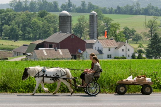 amish-shopping-trip