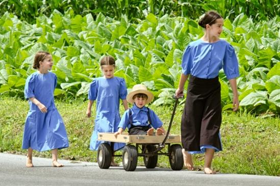 amish-sibling-walk