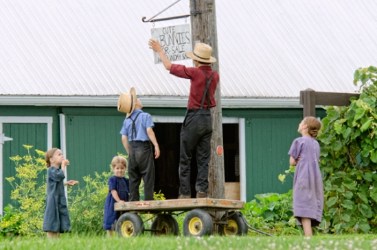 amish-sign-hanger