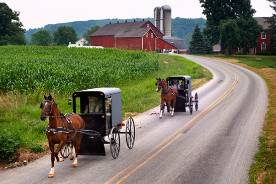 two-buggies-near-strasburg