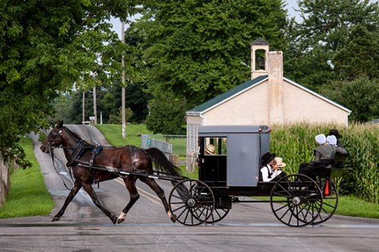 amish-rumble-seat