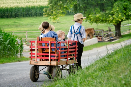 amish-wagon
