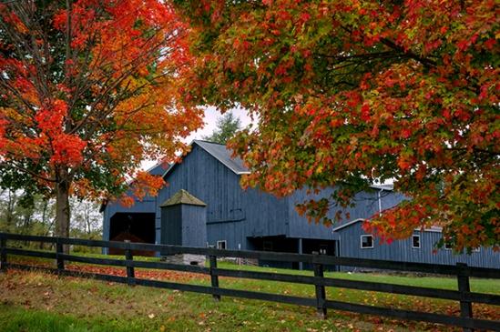 blue-fall-barn