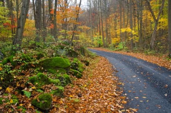 seglock-fall-scene