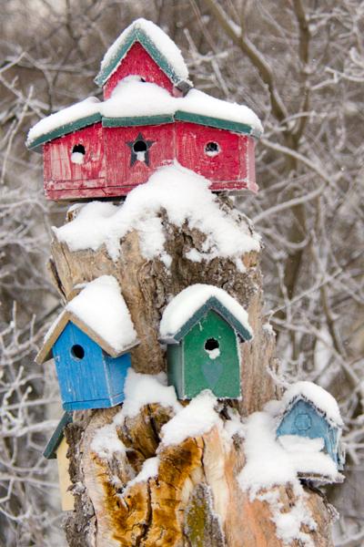 snowy-birdhouses