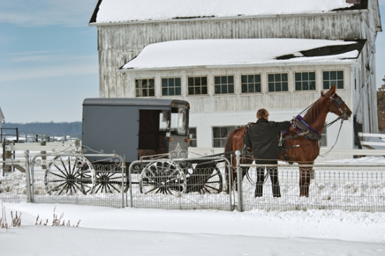 amish-four-wheeling