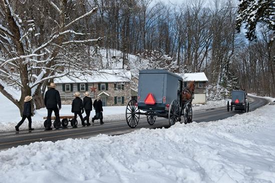 amish-snowy-stroll